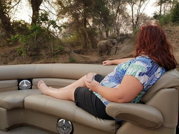 Luxury Africa Boat With Elephants