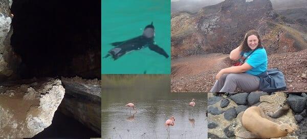 Galapagos Unique Landscape